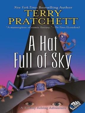 a-hat-full-of-sky1