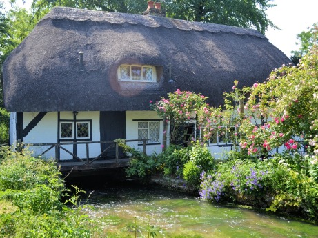 English cottage with garden