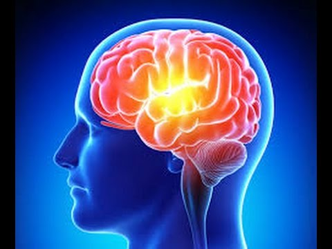 Seven-Ways-You-Can-Increase-Your-Memory-Power