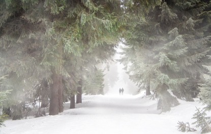 Two people walking in the distance down a snowy road through the woods