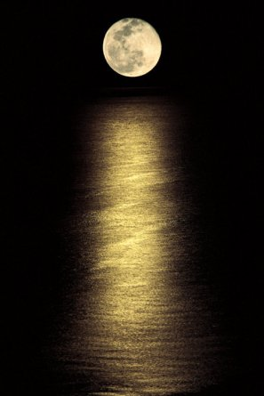 moonlight-ocean-i1361