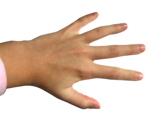 Hand_-_Fingers