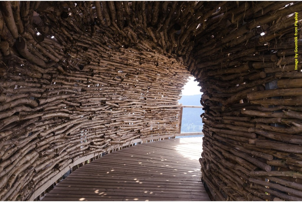 Tunnel of wood