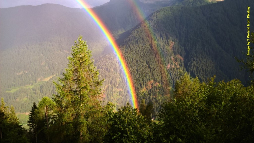 Rainbow in mountain forest